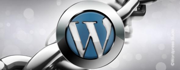 Безопасность и WordPress